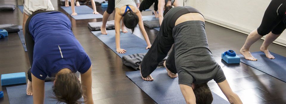 Beginner Yoga classes at Mind Over Muscle